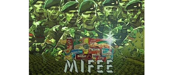 MIFEE-racist-land-grab